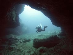 Scuba diving in Tenerife – What To Expect?