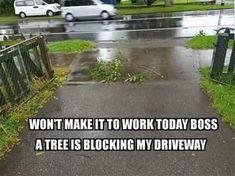 Morning Funny Memes 39 Pics