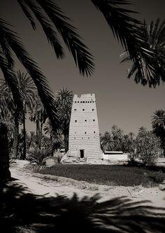 Najran houses - Saudi Arabia   Eric Lafforgue