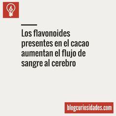 Blog Curiosidades — Blog Curiosidades Facebook || Twitter