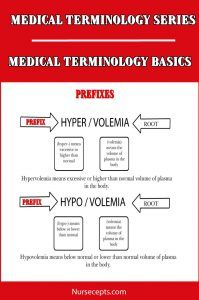 Learn the basics! This article on Medical of the terminology Basics will cover word root, prefixes and suffixes used in the creation of medical terminology. Medical Symbols, Medical Humor, Medical School Interview, Medical Pictures, Medical Laboratory Science, Technology World, Technology News, Technology Articles, Medical Coding