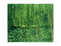Trees and Undergrowth Vincent van Gogh. Van Gogh Museum, Amsterdam, The Netherlands Art Van, Van Gogh Art, Vincent Van Gogh, Van Gogh Museum, Canvas Wall Art, Wall Art Prints, Oil On Canvas, Big Canvas, Monet