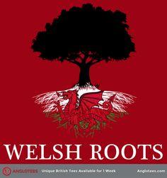 My ancestors left by 1624 ( Owen/Vaughan), however if the Davis family was from Wales, sometime before 1790. My surnames in Wales: Owen, Vaughan,Puleston, Pughe,Wynn, Morgan, Richard, Llwyd, Nannau, probably Davis. My husband's surnames: Thomas, Pritchard, Llewellyn (Lewellen), Humphrey
