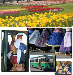 Tulip Festival, Holland MI...my intentions are to make it this year!