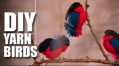 Con lana realizamos pajaritos  - Mad Stuff With Rob - DIY Fun Wooly Birds | Room Decor Ideas