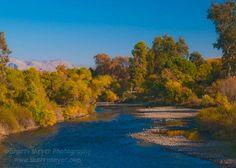 The Kern River. Hart Memorial Park, Bakersfield, California.