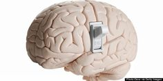 Scientists Find Brain has an On-Off Switch for Consciousness