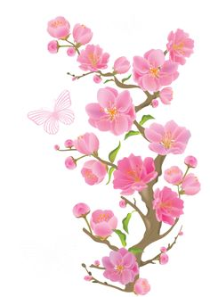 Spring Branch with Butterflies PNG Clipart Picture Cherry Blossom Flowers, Pink Flowers, Art Floral, Molduras Vintage, Tattoo Fleur, Spring Branch, Clip Art, Flower Clipart, Borders And Frames