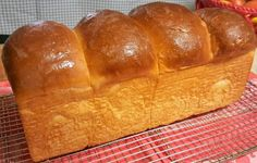 This Hokkaido Milk Sandwich Loaf is very soft and shred-able and totally delicious.