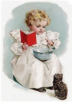 .A recipe and a kittie