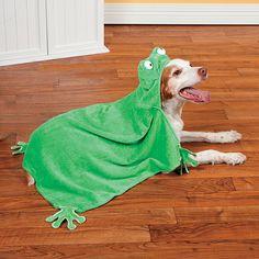 Hooded Frog Pet Towel - OrientalTrading.com