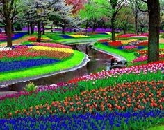 This is from Amsterdam. Not sure if it's a botanical garden or park because tulips are very big in the Netherlands.
