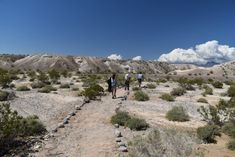 Explore One Of The Country's Richest Fossil Beds At Ice Age Fossils State Park In Nevada Cool Places To Visit, Places To Go, Nevada Ghost Towns, Rock Hunting, North Las Vegas, Local Attractions, Adventure Activities, Ice Age, Abandoned Places