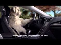 ▶ Meet Walter driving his 2014 Ford Fusion - YouTube
