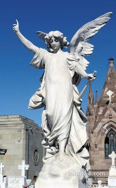 Colma California Holy Cross Cemetery Angels Angel