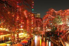 San Antonio is easily the best Christmas town in terms of its light display. All it takes to understand that is an evening stroll down the River Walk surrounded by twinkling orbs that reflect beautifully on the water below. Best Christmas Light Displays, Best Christmas Lights, Christmas Town, Holiday Lights, Christmas Traditions, Beautiful Christmas, Christmas Holidays, Merry Christmas, Christmas In America