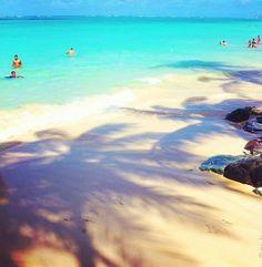 I love hawaii♡(>◡<)♡