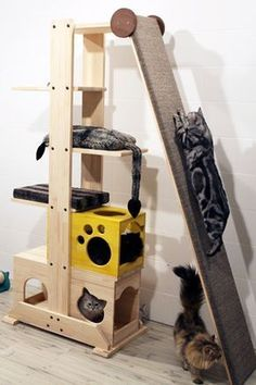 55 Ideas cat tree diy awesome kittens for 2019 Animal Room, Diy Cat Tower, Cat Gym, Cat Jungle Gym, Cat Towers, Cat Shelves, Cat Playground, Cat Enclosure, Reptile Enclosure