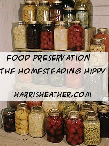 A Bit of History of some food preservation techniques