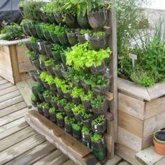 plastic-vertical-vegetable-garden-300x300.jpg (300×300)