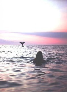 Sunset girl in the sea with mermaid tail / dolphin / whale