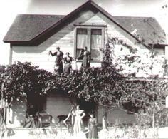 Castro Valley Histrory Page2