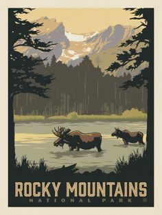 Anderson design group - 60 american national parks - rocky m Retro Poster, Gig Poster, Death Valley National Park, Rocky Mountain National Park, American National Parks, Kunst Poster, Park Art, Parcs, Vintage Travel Posters