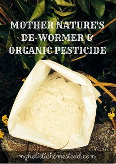 Benefits Of Diatomaceous Earth From Parasites In Humans And Animals To Gardening Flea Fly Pest Prote Emergency Preparedness Homesteading