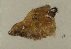 Wild Boar Pig Hog Head Animal 8x5 Original Art Watercolor Painting by Juan Bosco | eBay