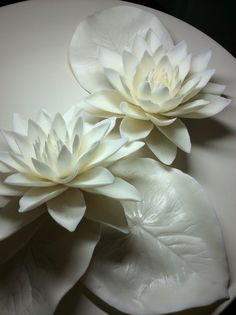 Water lily, porcelain, 2014. Artist Peskova.L©