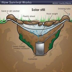 Survival skills - fun project for the desert!