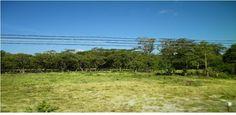 MPaniagua bienes raices: 0358003 Finca, Liberia, Guanacaste, Costa Rica
