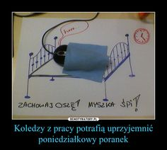Very Funny Memes, Wtf Funny, Funny Mems, Man Humor, Good Mood, Sentences, Haha, Geek Stuff, Jokes