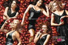 Desperate Housewives - Promo shot of Teri Hatcher, Eva Longoria, Marcia Cross, Felicity Huffman & Nicollette Sheridan. The image measures 3500 * 2307 pixels and was added on 1 January Serie M6, Film Serie, Marcia Cross, Movies And Series, Movies And Tv Shows, Tv Series, Picture Movie, Movie Tv, Desperate Housewives Cast