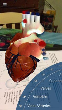Anatomy 4D un'app da provare