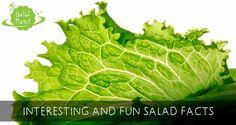 Having fun with salad