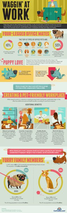 An #infographic about #pets in the workplace. Sounds like having our Tuxie boy around is a lot better for us than we thought!