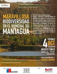 Biodiversidad de Humedal de Mantagua en Viernes de Cultura + Ciencia