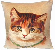 Cushion cover throw pillow case 18 inch tabby cat bell co... https://www.amazon.com/dp/B00VT73KH8/ref=cm_sw_r_pi_dp_x_G4X6ybXKFWH7A
