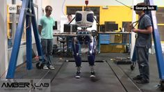 UP NEXT Endangered Hawaiian crow… This robot is designed to strut like a human