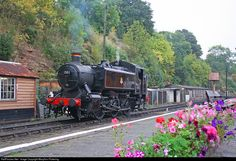 RailPictures.Net Photo: 1501 British Railways Steam 0-6-0 at Bewdley, United Kingdom by MaryAnn Pickering