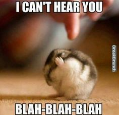 I CAN'T HEAR YOU!!
