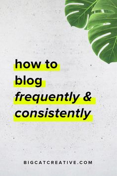 How to Blog Frequently and Consistently — Big Cat Creative | Branding and Website Design for Creative Entrepreneurs | Business Tips | Business Tips and Tricks | Blogging Tips | Blogger | Professional Blogger | How to Blog | Blog Ideas | Blog Tips | Blog Tips and Tricks | Block Hacks | Small Business Blogging | Small Biz Strategy | Small Business Plan