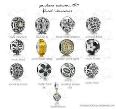 Pandora Autumn 2014 - Floral/Decorative Pieces. I like several of these but the floral padlock is my favorite!