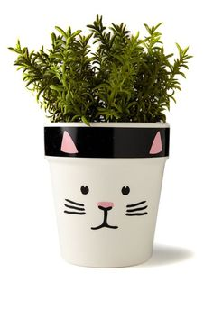 Struggling to find that perfect gift for a family member or a friend? Look no further than our amazing face planters! Fresh from the Typo garden, there are multiple designs to choose from – so you can give them a whole little planter family! Painted Plant Pots, Painted Flower Pots, Painted Pebbles, House Plants Decor, Plant Decor, Diy Planters, Large Planters, Flower Pot Art, Flower Pot People
