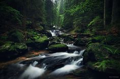 """The Dark Creek - <a href=""""https://www.facebook.com/pages/Landscape-Photography-by-Kilian-Schoenberger/304631876263547"""">L A N D S C A P E P H O T O G R A P H Y facebook</a> Hidden deep in the forests..."""