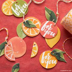 Citrus Slice Gift Toppers