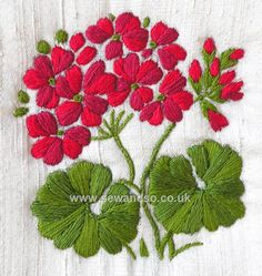 Buy Geranium - Silk Stitch & Sow Embroidery Kit Online at www.sewandso.co.uk