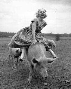 Piggy back, 1956