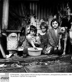 Gypsy children with their pet dog in Hertfordshire , photographed by Jane Bown , 1966 © Jane Bown